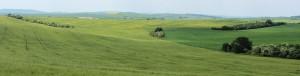 モラヴィア大草原写真